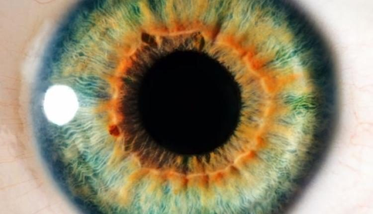 A low-glycemic diet may prevent age-related eye disease